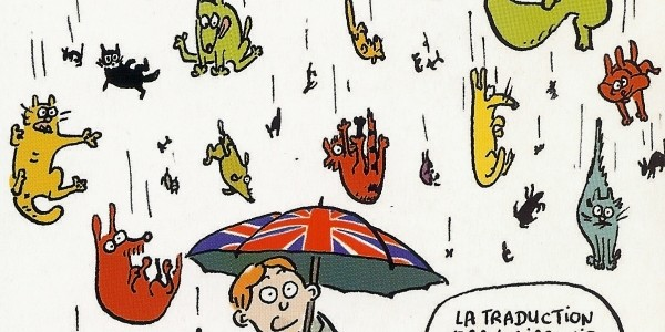 «It's raining cats and dogs !»